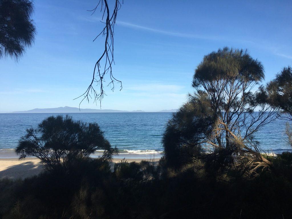 Mit Camper in Tasmanien - Brickfield Beach