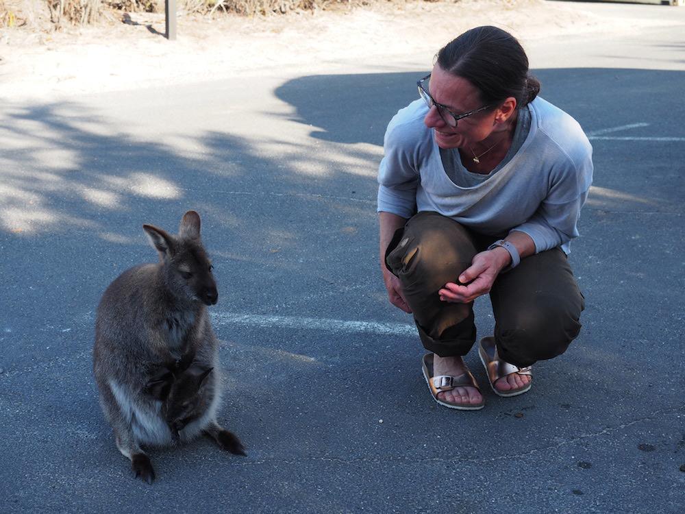 Mit Camper in Tasmanien