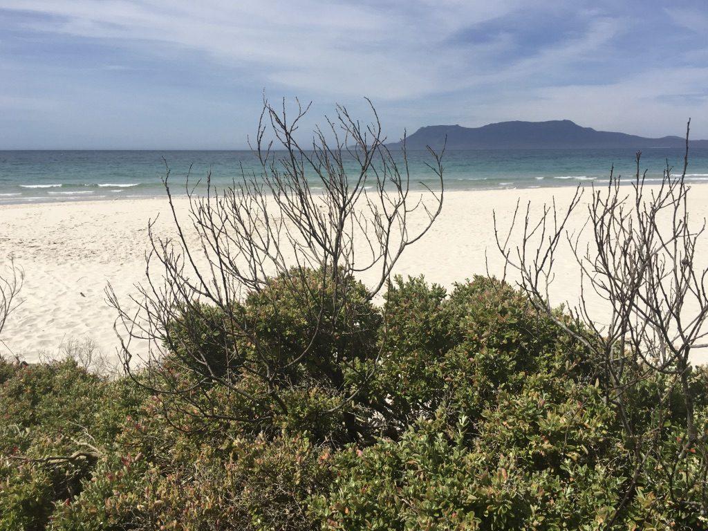 mit Camper in Tasmanien - Spring Beach