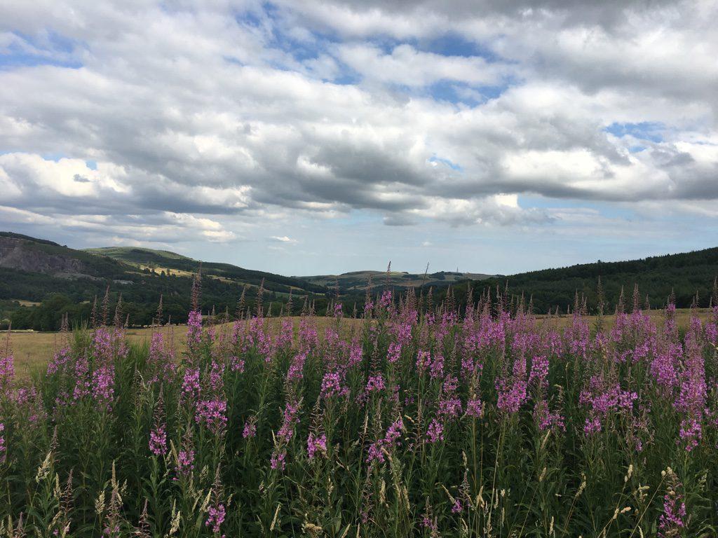 Landschaft um Dumfries